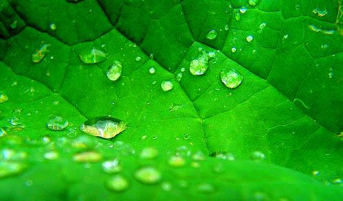 Impermeabilidad y transpirabilidad.